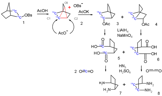 Scheme 4. non-classical ion tracer studies