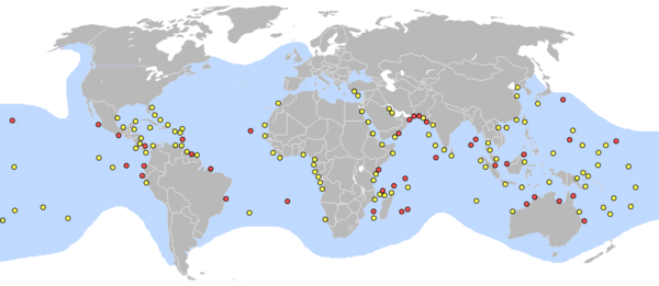 Map showing turtle distribution with concentrations at entrance to Persian Gulf, East African coast, East and West South African coasts, Northern Australia, and Indonesia, with lesser concentrations in Caribbean, Western African coast, Red Sea, India, and Oceania.